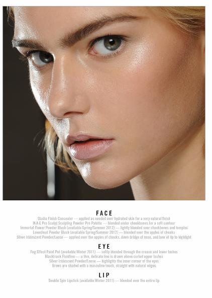 1800 makeup face charts mac pro bible cosmetics manual training rh ebay com Product Knowledge Training for Games Product Training Program