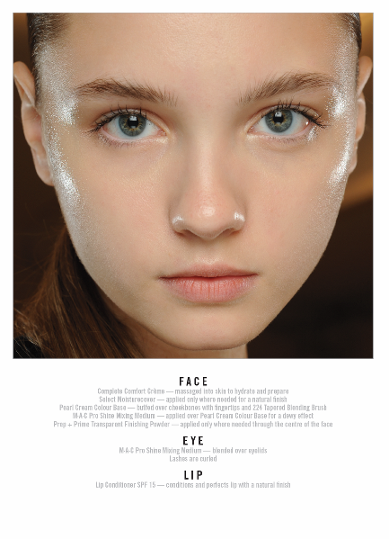 1800 makeup face charts mac pro bible cosmetics manual training rh ebay com Product Knowledge Training Ideas Hair Product Knowledge Training
