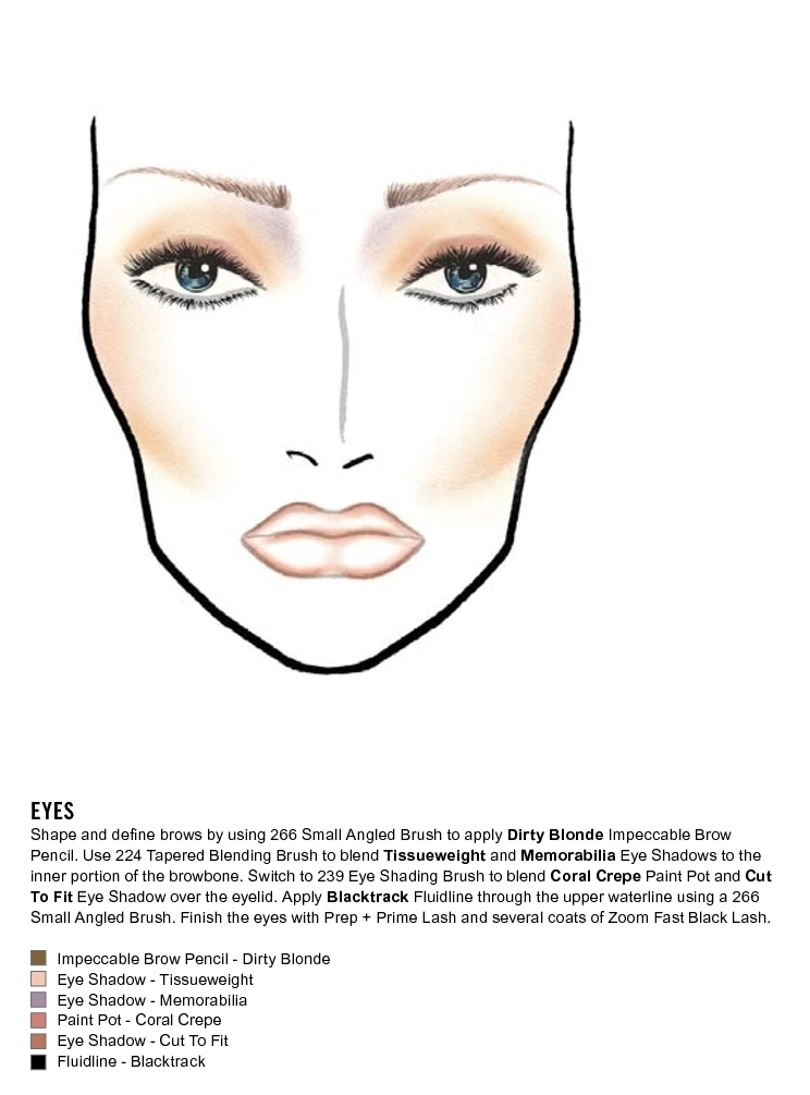 1800 makeup face charts mac pro bible cosmetics manual training rh ebay com Product Knowledge Training Rest Left to Chance Product Knowledge Training Ideas