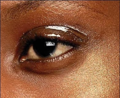 1800 makeup face charts mac pro bible cosmetics manual training rh ebay com New Product Training Cartoon Product Training Program